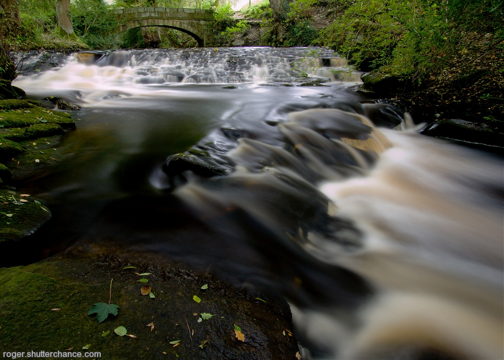 photoblog image River Rivelin